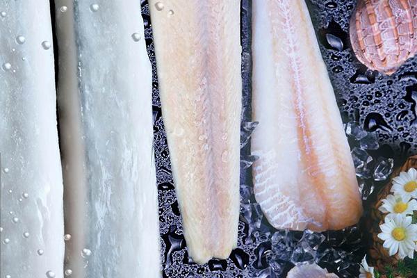 Frozen Fish Seafood Hake Fillets