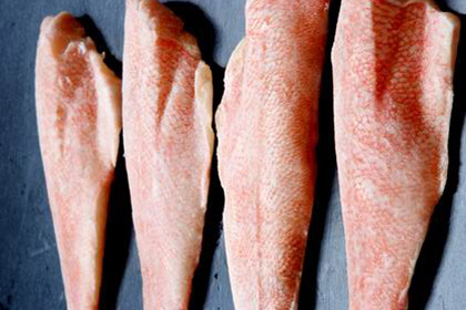 Frozen Fish Seafood Red Fish Fillet