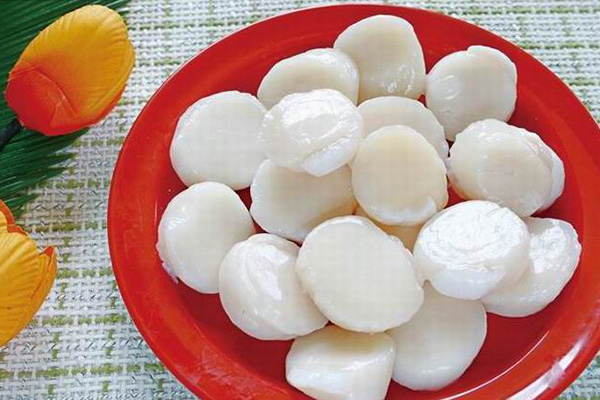 Frozen Fish Seafood Scallop 1