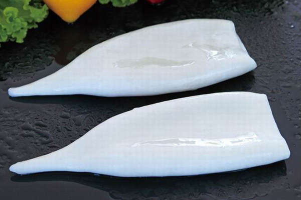 Frozen Fish Seafood Squid Tube
